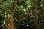 06-Explorama