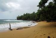 Bluff Beach