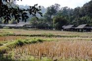 15-ethnicvillage