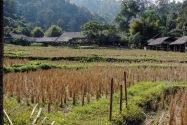 17-ethnicvillage