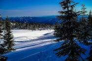 Mt Shasta CA