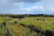031-EasterIsland