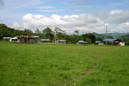 06-shuarachuar