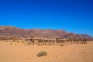 Village Namibia