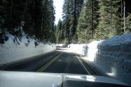 Sequoia NP, CA