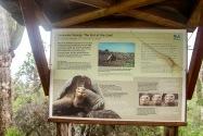 Darwin Center, Galapagos Island