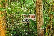 Explorama Lodge, Peruvian Amazon