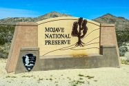 Mojave NP CA