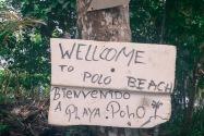 Polo Beach Bocas