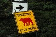 Yosemite NP CA