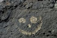 Petroglyph NM, NM