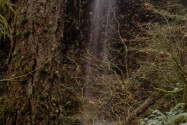 Silver Falls SP, OR